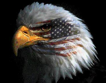 Eagle Graphics Custom Embroidery
